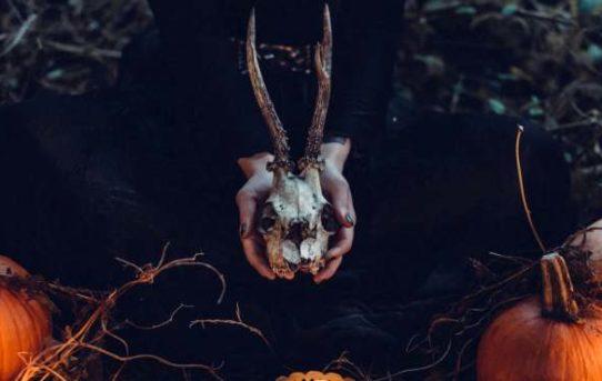 5 Halloween-Filme, die man gesehen haben muss