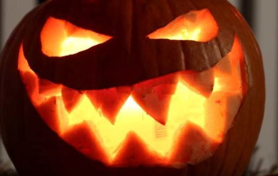 Trick – Dein letztes Halloween (Rezension)