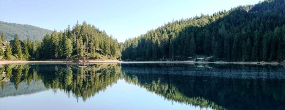 Ein See mit Bäumen