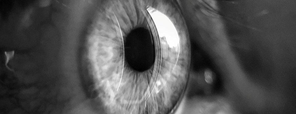 Eine Nahaufnahme eines Auges in schwarzweiß.